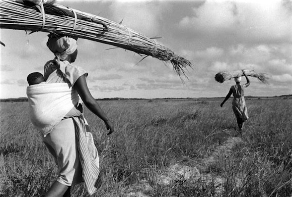 Cedric Nunn, local women with harvested reeds, Kosi Bay, Ingwavuma, KwaZulu-Natal, 1991 ©Cedric Nunn